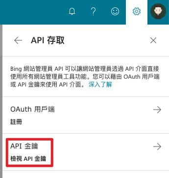 Bing Webmaster Tools 檢視 API 金鑰