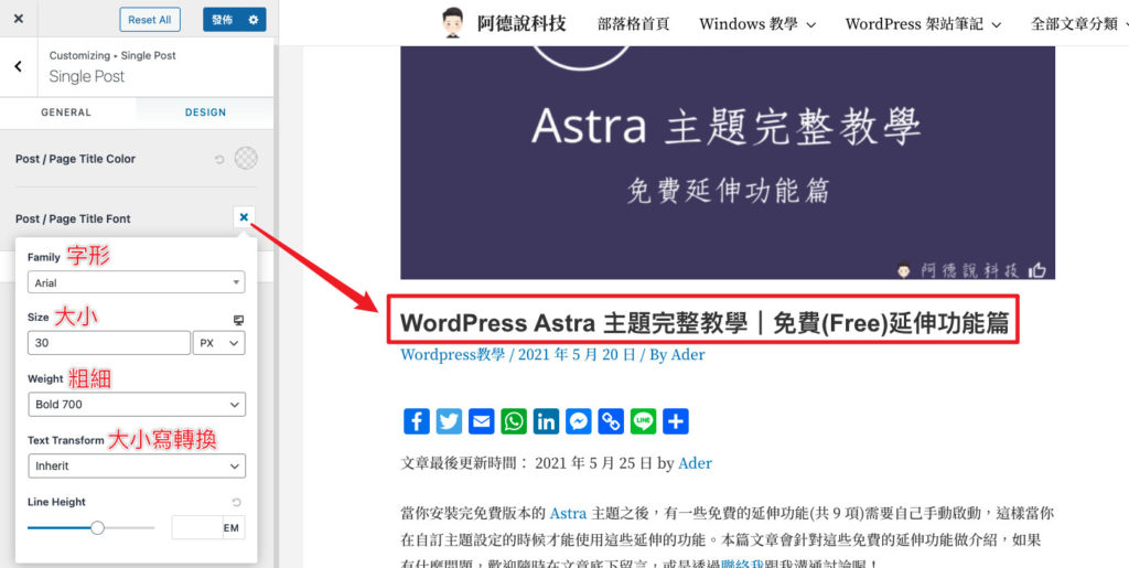 Astra-Theme-Pro-Post-Font